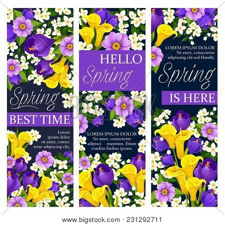 Happy Spring Best Time Wishes Banners Of Daffodils, Tulips And Crocuses Bouquet. Vector Floral Desig