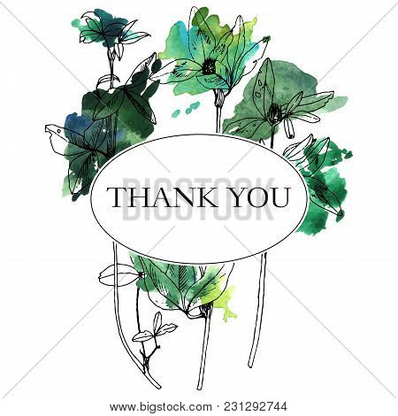 Vector Background With Drawing Wild Plants, Herbs And Flowers And Paint Stains, Botanical Illustrati