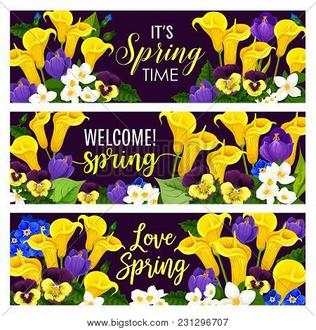 Spring Season Holiday Floral Banner With Blooming Flower Bouquet. Crocus, Calla Lily, Jasmine And Pa