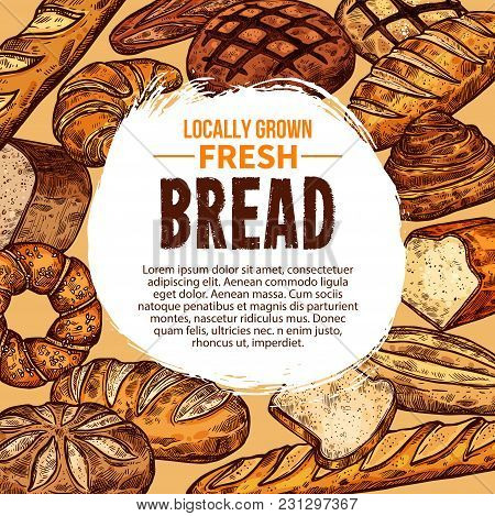 Vector Sketch Poster With Different Bread Products. Concept Of Locally Grown Fresh Bread. Various Ba