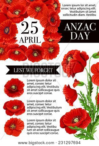 Anzac Day Australia And New Zealand War Remembrance Holiday Poster For Lest We Forget Design. Vector