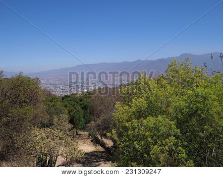 Beauty mexican mountainside path and landscapes with colorful plants and trees seen from Monte Alban near Oaxaca city, clear blue sky in 2018 warm sunny summer day, North America on February.