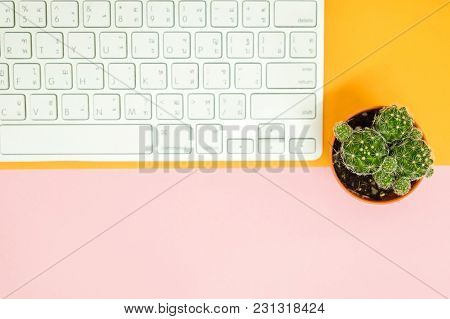 Top View Business Table With Keyboard And Plant Place On Table Background. Image For Copy Space, Cac