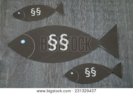 European Fishing Law - Quotes And Laws For The Professional Fish Catching In The European Community