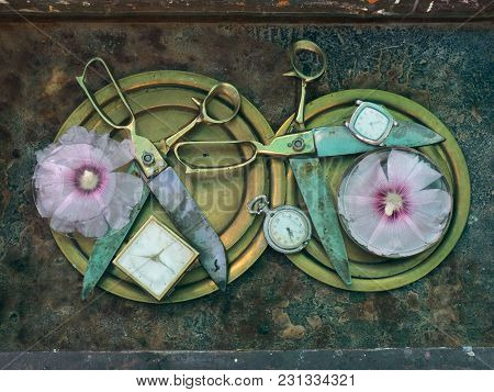 Laconic Art Still Life Of Two Ancient Scissors, Perpendicular To Each Other, Three White Clocks And