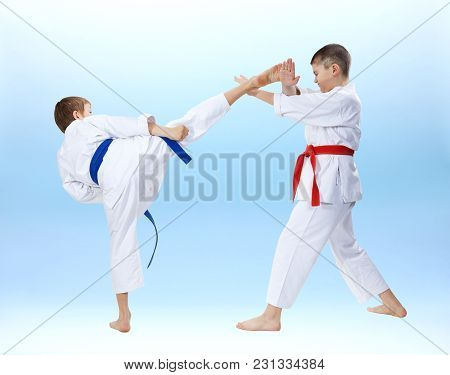 Two Boys Are Trained Punches And Blocks Karate