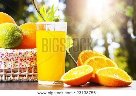 Fresh Orange Juice In Glass Beaker, Slices Of Sliced Oranges And Basket On Background Of Spring Gree