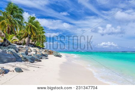 Stunning white sandy tropical beach with rocks and palms on Rarotonga, Cook Islands