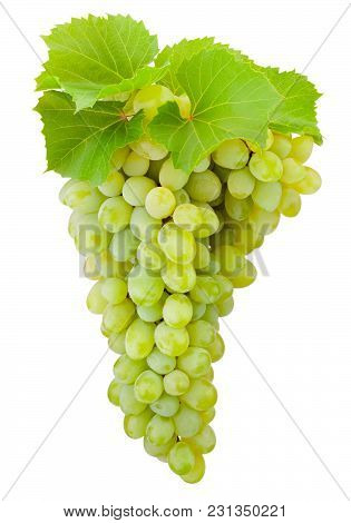 Fresh Green Grapes With Leaves Hanging Isolated On White Background