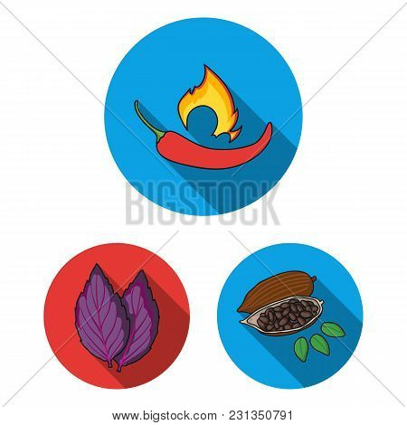 Herb And Spices Flat Icons In Set Collection For Design.different Kinds Of Seasonings Vector Symbol