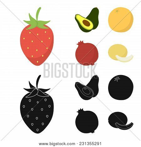 Strawberry, Berry, Avocado, Orange, Pomegranate.fruits Set Collection Icons In Cartoon, Black Style