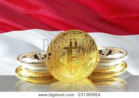 Bitcoin Coins On Indonesia's Flag, Cryptocurrency, Digital Money Concept Photo