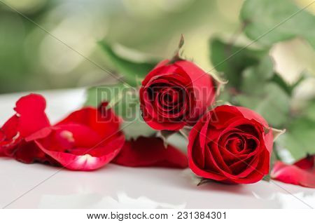 Beautiful Red Roses On White Table, Popular Flower In Valentine Day