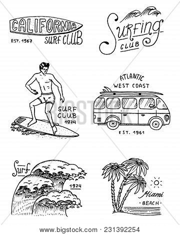 Surf Badge And Wave, Palm Tree And Ocean. Tropics And California. Man On The Surfboard, Summer On Th