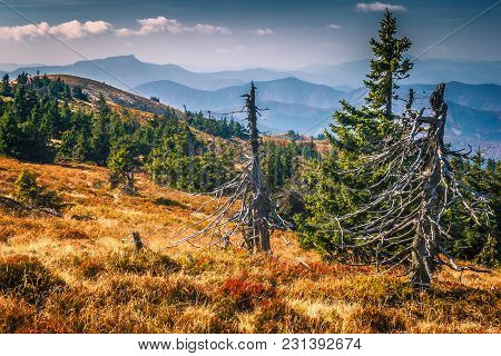 Mountainous Country In The National Park Mala Fatra In Northern Slovakia, Europe.