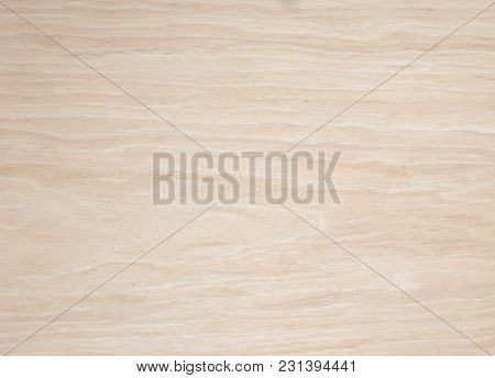 Whiten Oak Texture Or Background For Web