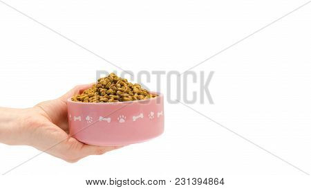 Female Hand Takes Or Gives Pets Food. Isolated On White Background. Copy Space, Template