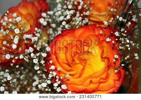 Orange And White Flowers In Present Bunch