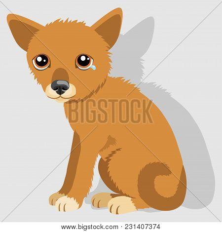Sad Crying Dog Cartoon Vector Illustration. Dog With Tears. Weep Homeless Pet.