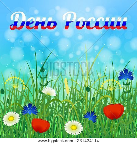 Official Russian Holiday. 12 June. Text In Russian - Russia Day. Field Grass And Flowers. Russian Co