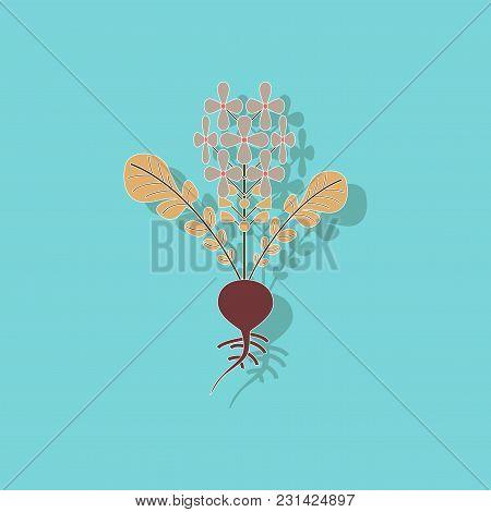 Paper Sticker On Stylish Background Of Plant Raphanus