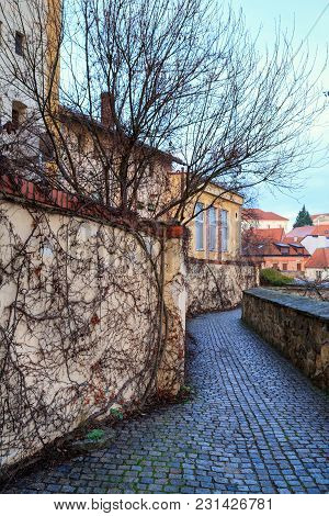 Old Paved Street With Ivy-covered Wall In The Old Town Of Znojmo, Czech Republic, South Moravia, Eur