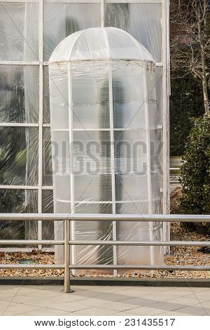 Measures To Protect Heat-loving Plants In Winter. Device Greenhouses Made Of Polyethylene To Protect