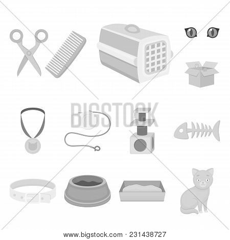 An Animal Cat Monochrome Icons In Set Collection For Design. Caring For A Cat Vector Symbol Stock  I