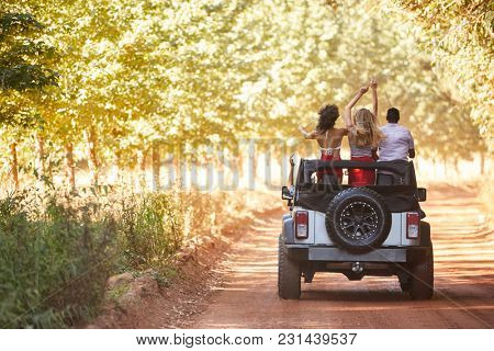 Friends standing in an open top car, back view