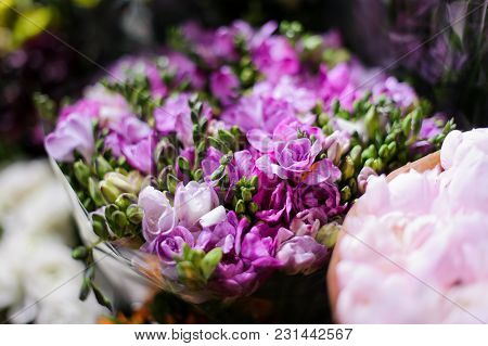 Macrophotography Of A Bouquet Consisting Of Tender Spring Purple Flowers With Unopened Buds