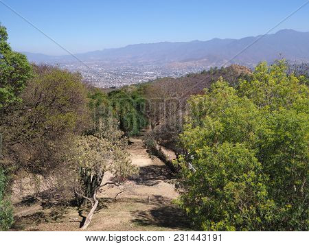 Beauty Mexican Mountainside Path And Landscapes With Colorful Plants And Trees Seen From Monte Alban