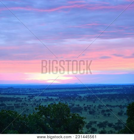Beautiful View Of The Savanna From The Top In The Serengeti National Park During The Sunrise, Tanzan