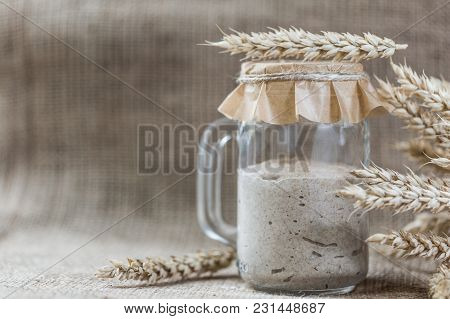 Rye Natural Leaven For Bread In A Glass Jar. A Living Product. Spikelets. The Concept Of A Healthy D
