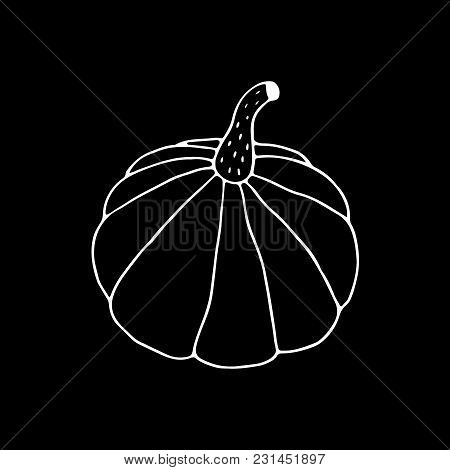Linear Cartoon Hand Drawn Pumpkin Drawing. Cute Vector Black And White Pumpkin Drawing. Isolated Mon