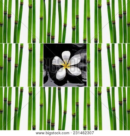 Spa Composition With Zen Stones and bamboo grove steam  frangipani,