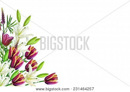 Bright Spring Flowers Of Tulips And Lilies.