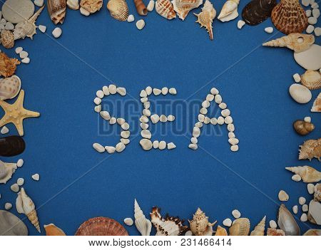 Flat Lay. Inscription Sea From Stones, Frame Of Shells Of Various Kinds On A Blue Background. Seashe