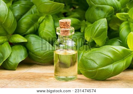 A Transparent Bottle Of Basil Essential Oil With Fresh Basil Leaves