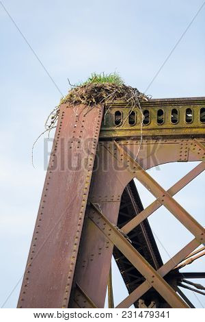 Eagle Nest At The Top Of A Train Trestle In Oregon Above The Mckenzie River. This Nest Was Built By