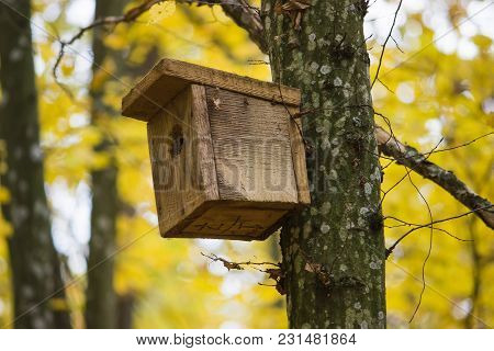 Old Wooden Birdhouse On A Tree In Forest Park , Hand Wood Shelter For Birds To Spend The Winter