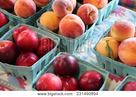 Ripe Fresh Plums And Peaches In Cardboard Containers On Table At Farm Stand