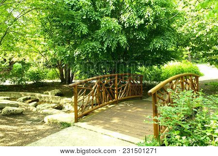 Wooden Bridge In Park With Green Trees In Summer