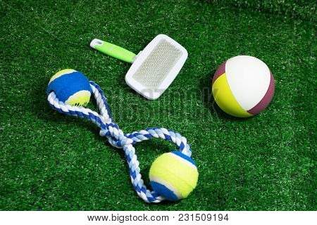 Pet Accessories About Ball, Brush And Rope Toys For Dog On Green Grass.