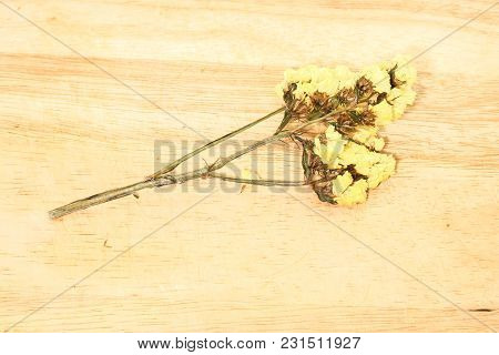Close Up Single Of Yellow Statice Flower Background Use For Decoration On Brown Wooden