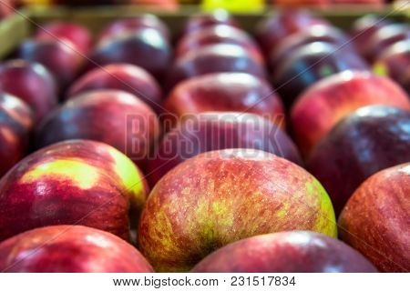 One Granny Smith Apple Among Group Of Gala Apples Laid Out In Rows At A Grocery Shop For Sale. Verti