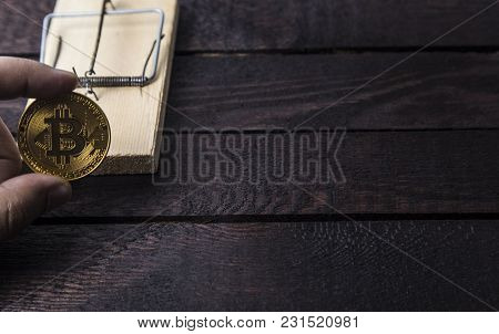 Wooden Mouse Trap And Man Holds Bitcoin
