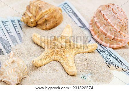 Seashells And Money Hidden In The Sand.
