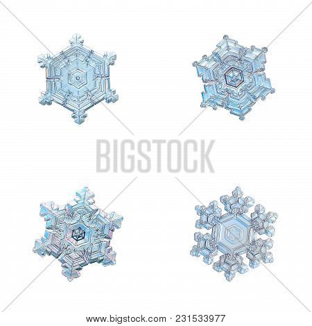 Four Snowflakes Isolated On White Background. Macro Photo Of Real Snow Crystals: Large Stellar Dendr