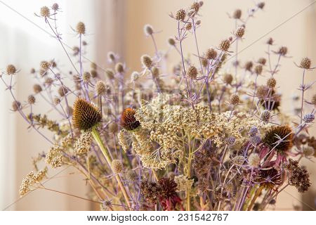 Bouquet Of Dried Wildflowers With Filter Effect Retro Vintage Style, Soft Focus And Blurred