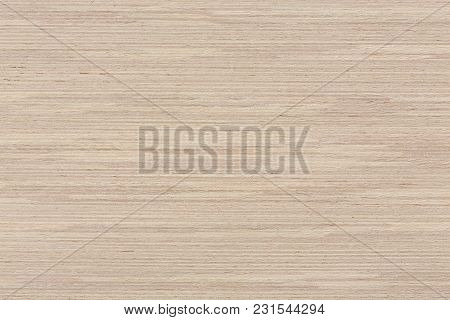 Natural Oak Veneer Texture On Macro. Extremely High Resolution Photo.